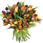 """Букет """"Тюльпаны (51 шт.)"""""""